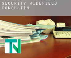 Security-Widefield  Consulting