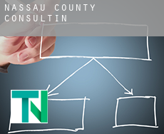 Nassau County  Consulting